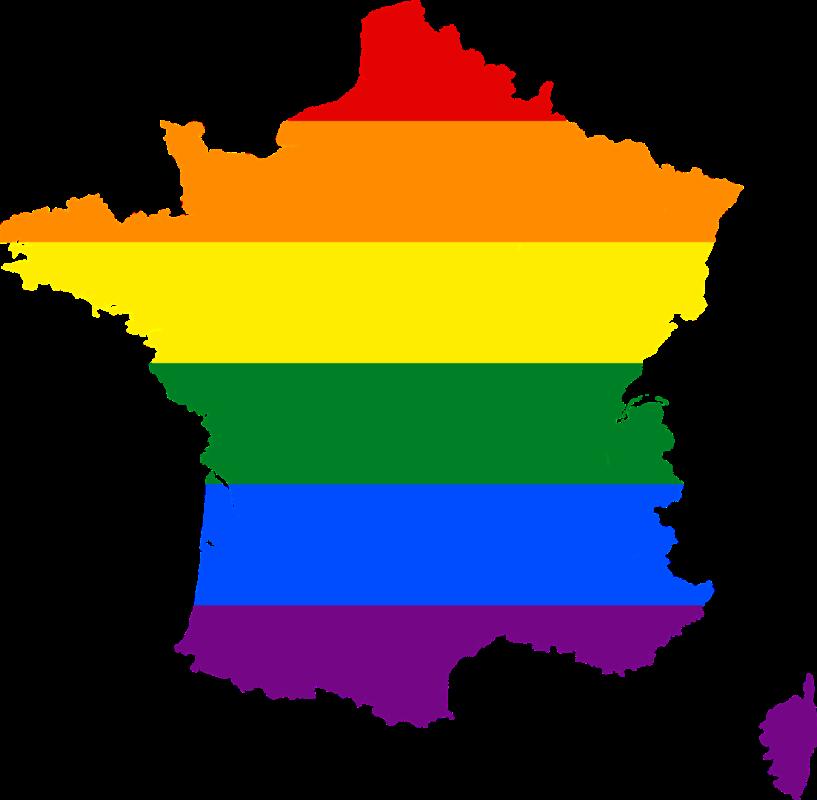 francia lgbt ley bioetica madres lesbianas